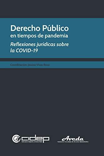 Derecho Público en tiempos de pandemia: Reflexiones jurídicas sobre la COVID-19: 4 (Colección Colectivos)
